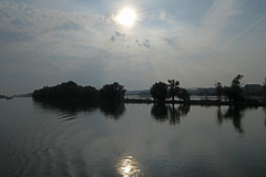 Rhine river in morning mist (barbmz) Tags: rhein rhine fluss river morning mist dunst sonne sun island