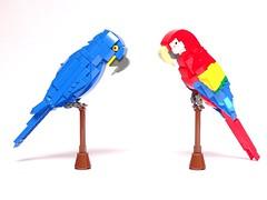 Hyacinth macaw (Anodorhynchus hyacinthinus), and Scarlet macaw (Ara macao) (LuisPG2015) Tags: lego macaw