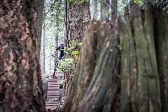 """2018 Fromme Fondo 32 (Jeremy J Saunders) Tags: fromme mountain bike fondo 2018 nikon """"jeremy j saunders"""" jjs north shore vancouver bc british columbia sport forest nsmba"""