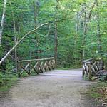DSC01812 - Waterfall Trail - First Bridge thumbnail