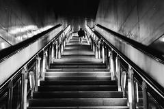 3 auf einmal (Zesk MF) Tags: steps stufen stairs treppe underground woman frau street walking up zesk cologne bw black white fuji x100f subway ubahn