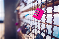 The combination to love (G. Postlethwaite esq.) Tags: atlanticocean autonomousregion dof fujix100t macro madeira portugal bokeh closeup depthoffield fence lovelocks photoborder selectivefocus
