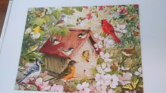 Did a bird puzzle with my grandmother  8/13/18 #Puzzles #Birds (wallpapers93) Tags: birds puzzles