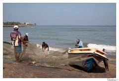 (Raul Kraier) Tags: fisherman fish net negombo srilanka canon