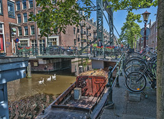 Amsterdam, a small canal (Only photoshoot, don't be afraid) Tags: amsterdam goose bridge brug brücke pont bateau boot boat canal gracht oie thenetherlands
