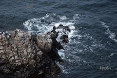 Brandungsfelsen (raffi_wilhelm) Tags: wellen wave shore rocks sea ufer felsen wasser brandung meer