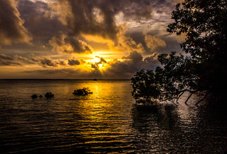Sunset, Lameroo Beach (Floodet)