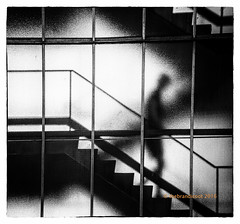 Escape (trebandicoot (Lynn)) Tags: steps building fire escape bw monochrome mono shadow fireescape stairwell heritage brisbane queensland glass silhouette lines australia stairs