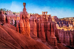 Thor's Hammer - Textured (byron bauer) Tags: byronbauer red rock hoodoo formations wall bryce canyon amphitheater nationalpark majestic color landscape sedimentary strata erosion utah texture painterly topaz simplify sunset point thor hammer trees spire