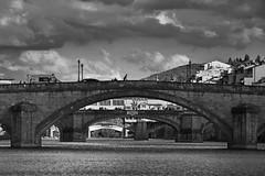 ponti fiorentini