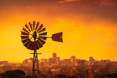 Windmill at sunset in South Australia (spotandshoot.com) Tags: adelaide australia cbd south area australian background blurred buildings city cityscape climate copyspace destination district downtown drought environment famous farming hot landscape mill modern natural old outdoor pump red resources scenic skyline skyscrapers station summer sunset tourism travel trip urban vacation vibrant view vintage warm warming watering wheel wind windmill sa