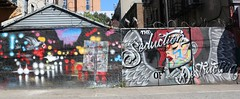 . (SA_Steve) Tags: mural streetart art brooklyn brooklynny nyc