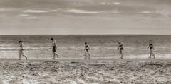 Beach Safari (Jon Scherff) Tags: walking rhodeisland five sepia