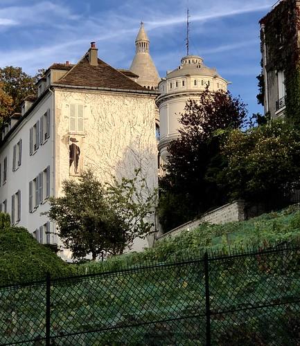 La Vigne De Montmartre Clos Montmartre Le Jardin Sauvage Saint