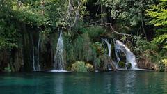 DSCF8421 (rmassart) Tags: m08 y2018 croatia plitvicka jezera plitvickajezera plitvichka lakes
