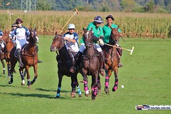 am_polo_cup18_0373 (bayernwelle) Tags: amateur polo cup gut ising september 2018 chiemgau bayern oberbayern pferd pferdesport reiter bayernwelle foto fotos oudoor game horse bavaria international reitsport event sommer herbst