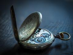 "MacroMonday ""Cogwheel"" (Janos Kertesz) Tags: macromonday cogwheel"