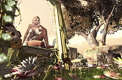 Lost Without You (Sadwolf SL Photos) Tags: thelookingglass swankevent garden outside furniture daisies frame swing table chair tree bird buterfly