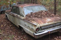 More Relics & Refugees (BennyPix) Tags: junkyard rust old classic vintage antique retro barkada wilmar ar drewcounty arkansas november 2015 © allrightsreserved unauthorizedusestrictlyprohibited allcommercialuseprohibited junk car auto automobile bennypix canon eos 50d 1962 ford fairlane 500