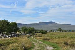 Path to Ingleborough (Bri_J) Tags: yorkshirethreepeaks walk yorkshiredales nationalpark northyorkshire uk yorkshire countryside hills nikon d7200 path ingleborough