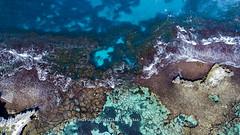 Rottnest Island_Reef_0108