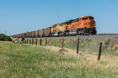 RR-20180731-JointLine-201 (skyviewtim) Tags: bnsf9298 coalload coloradorailroads coloradotrains tomah colorado unitedstates us