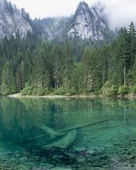 Lago di Tovel, Trentino,  Italy (unvirtual) Tags: suedtirol lago tovel italia italy trentino submerged thalassophobia tuenno val di non valdinon cles guistina