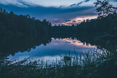 Late Summer Sunsets (freyavev) Tags: bärensee lake stuttgart badenwürttemberg deutschland germany sunset longexposure reflections reflection nature natureoasis vsco outdoor canon canon700d mikasniftyfifty landscape