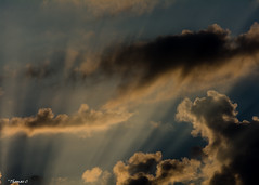 September Sun Rays (that_damn_duck) Tags: sunrise sunrays clouds cloud nikon nature dawn