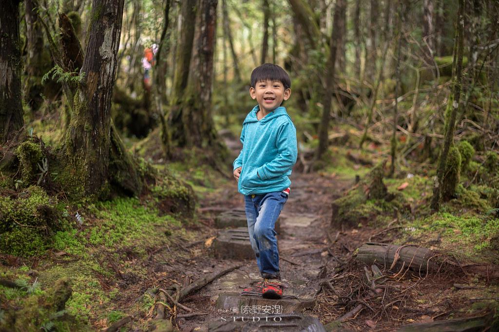 太平山翠峰湖環山步道 |走在泥濘的道路上,只為途中美景 | 宜蘭大同鄉47