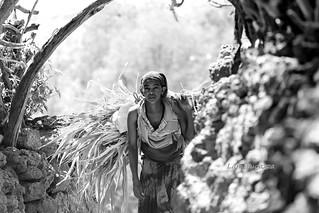 Villagio KONSO , sud Etiopia