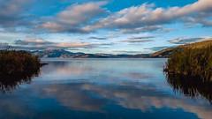 The Earth is Art (Stefania Avila) Tags: muelle hierba campo pier color blue lake water sky nature landscape colombia boyaca naturaleza mountains tota clouds sunrise sunshine