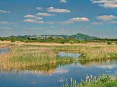 HamWallLookingTowardsGlastonburyTor - Copy (iankellybn26dj) Tags: uk england glastonbury landscape nature natural marshes lake light sun summer wetland