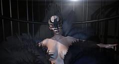 Caged Bird (Victoria Konnor James) Tags: lyriumposes mysticclothing monayag risk mandala doux maitreya catwa insol aviglam izzies alaskametro luxrebel vanityevent feathers cage bird mayaangelou