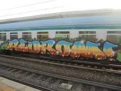 299 (en-ri) Tags: redrom rdm arancione marrone azzurro train torino graffiti writing verde
