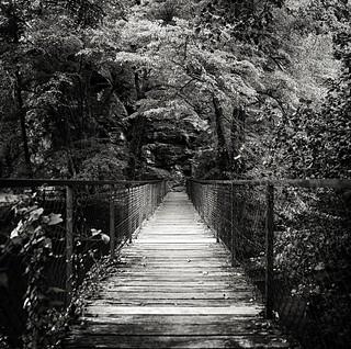 Bridge Of Forgivness