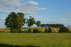 Landscape (Jurek.P) Tags: landscape krajobraz wróbelnadrzeką mazury masuria poland polska fields road trees jurekp sonya77