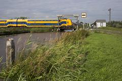 Dubbele Wiericke (Tim Boric) Tags: dubbelewiericke brug hefbrug lifting bridge trein train zug bahn spoorwegen railways canal ns ddz