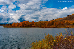 Colors of Fall (pohlenthe49er) Tags: usa wyoming grand teton nationalpark herbst