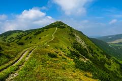 Vranica mountain, Bosnia and Herzegovina (HimzoIsić) Tags: landscape mountain mountainside peak mountaineering hiking hill outdoor nature grassland grass green sky clouds trail path
