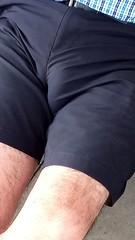 40021511_450445982108651_6268757377013514240_n (CAHairyBear) Tags: bulge
