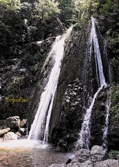 Waterfalls (Stergios Rοssι) Tags: waterfall water woods forest chalkidiki greece nature river