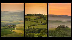 Tuscany Triptych (Neha & Chittaranjan Desai) Tags: italy tuscany toscana travel landscape nature golden hour sunrise sunset dawn dusk hills countryside cyprus trees farm house spring