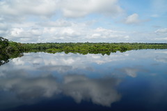 Reflected Sky (tim ellis) Tags: holiday amazon iracema rionegro river riverjau sky clouds reflesction manaus brazil