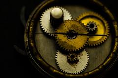 "Macro Mondays ""Cogwheel"" (Michael J P) Tags: macromondays cogwheel nikon nikond610 nikkor60mmf28macro nikkor hmm macro"