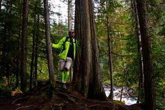 _DSC0652 (marcella.cavelli) Tags: canada britishcolumbia alberta squamish whistler banff jasper clearwater sky falls tree hike hiking trail trip snow lake wood ab bc