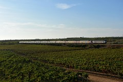 ETR 450 n13 PENDOLINO (luciano.deruvo) Tags: demolendi pendolino etr450 fs ferroviedellostato altavelocità trenoveloce