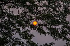 eye in the sky (jimmy_racoon) Tags: 70200 f4l is canon 7d dusk haze smoke sunday 70200f4lis canon7d