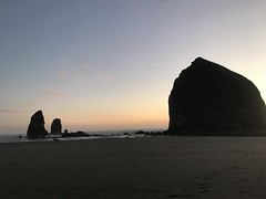 "F8AD91D8-558D-4E6D-9B67-12CE3C2CF98F (komissarov_a) Tags: cannonbeach haystackrock oregoncoast 101 formations tidepools sunsets spectacular ocean viewpoints rocks attraction tides running hiking skyhigh scenic pacific west surprise beautiful sandy shoreline perfect wonderland remarkable refreshing unbeatable stunning scenery unforgettable vistas naturalareas komissarova streetphotography rgb iphone7 color rainforest downtown paradise dramatic enjoyable landscapes famous nationalgeographic magazine picturesque sidewalks artgalleries specialtyshops restaurants ""oneoftheworld's100mostbeautifulplaces"