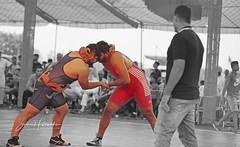 (sevenaale) Tags: mat wrestle wrestling empire coach audience fight final india punjabi